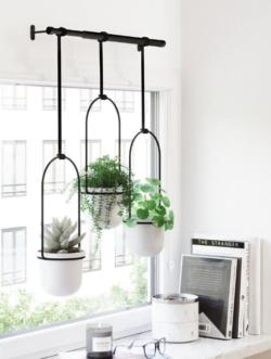 Væg - eller loft hængt potteplanteskjuler i hvid/sort fra Umbra