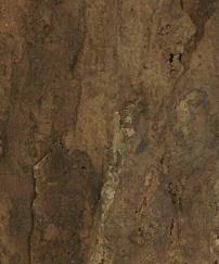 Arizona Natur kork 60x30 cm