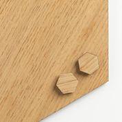 Super stærk magnet hexagon med egefiner (2 stk)
